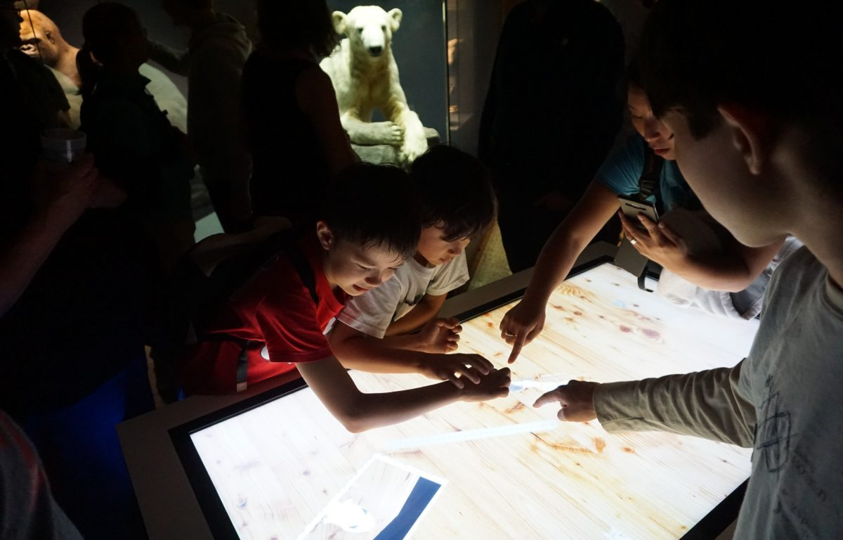 Multitouch software with object recognition and 3D dinosaurs at the Natural History Museum